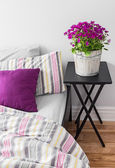 Purple flowers in a bright bedroom — Stock Photo