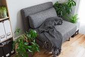 Pokój dzienny z jasnym roślin i fotel szary — Zdjęcie stockowe