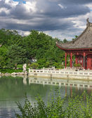 Chinese garden in summer — Stock Photo