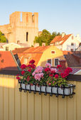 Geraniums decorating a balcony in Visby, Sweden — Stock Photo