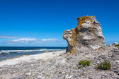 Cliff on the Baltic Sea coastline in Sweden — Stock Photo