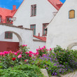 Swedish town Visby — Stock Photo