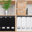 Shelves with boxes, folders and green plant — Stock Photo