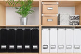 Shelves with boxes, folders and green plant — Stockfoto