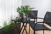 Room with lots of green plants — Stock Photo