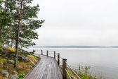 Wooden path on a lakeshore — Stock Photo
