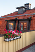 Roof terrace decorated with geraniums — Stock Photo