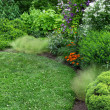 Beautiful garden with green lawn — Стоковое фото