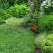 Beautiful garden with green lawn — ストック写真