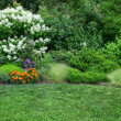 Blooming garden with green lawn — Stock fotografie