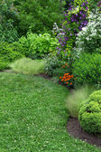 Beautiful garden with green lawn — Stock Photo