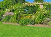Jardin d'été ensoleillée avec pelouse verte — Photo