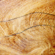 Stock Photo: Texture of wood