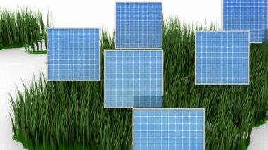 Solar Energy — Stock Video