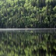 Calm lake — Stock Photo
