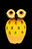 Yellow owl — Stock Photo