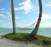 Beach hammock — Stock Photo
