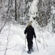 Forest snowshoeing — Stock Photo
