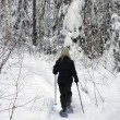 Stock Photo: Forest snowshoeing