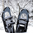 Snow shoes in the snow — Stock Photo