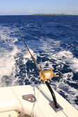 Deep sea fishing — Stock Photo