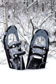 Raquetas de nieve en la nieve — Foto de Stock