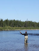 Salmon fly fishing — Stock Photo