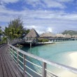 Bora bora paradise - Stock Photo