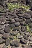 French polynesia sacred marae — Stock Photo