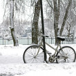 Stock Photo: Winter riding