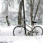 Winter riding — Stock Photo #21966765