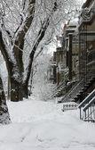 Montreal snow storm — Stock Photo