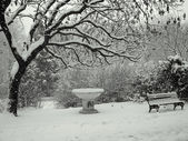 Park under the snow — Stock fotografie