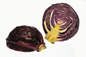 Red cabbage — Foto de Stock