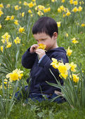 Child with daffodils — Stock Photo
