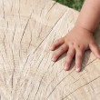 Hand on wood texture — Stock Photo