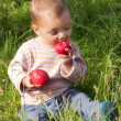Stock Photo: Child eating apple