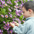 Stock Photo: Child in the garden