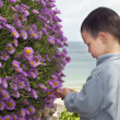 Child in the garden — Stock Photo #22896074
