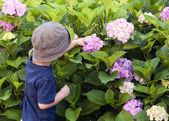 Child in the garden — Stock Photo