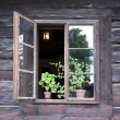 Wooden window — Stock Photo #29088247