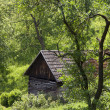 Stock Photo: Wooden barn or shed