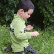 Stock Photo: Child exploring nature