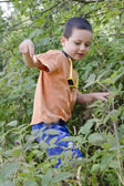 Child in wild nature — Stock Photo