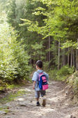 Child walking in forest — Stock Photo