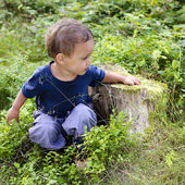 Child in blueberry forest — Stock Photo