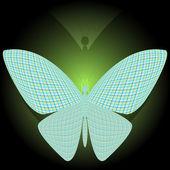 Papillon et sa réflexion — Vecteur