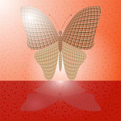 Butterfly on the wall and its reflection on a horizontal surface — Stock Vector