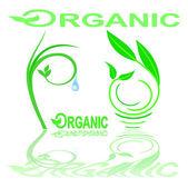 Vector organic ecology symbols — Stock Vector