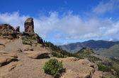 Büyük kayanın üzerinde gran kanarya — Stok fotoğraf